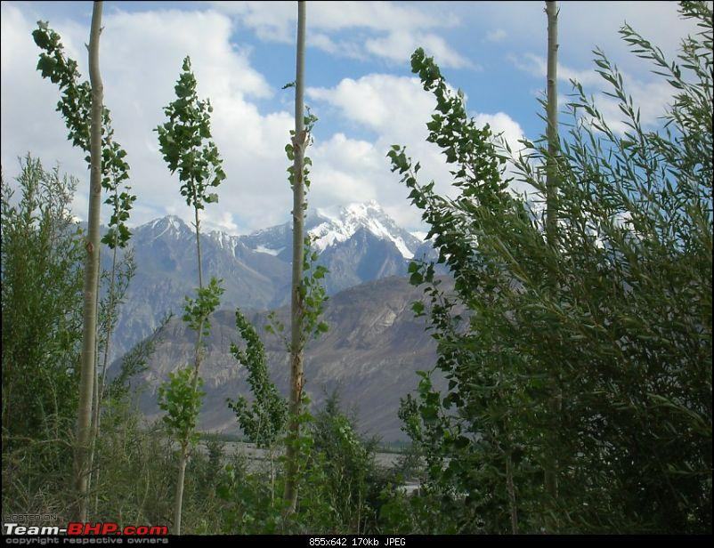 Ladakh and Changthang : The Wilderness Chronicles-north-khalsar-nubra-valley-855-x-642.jpg