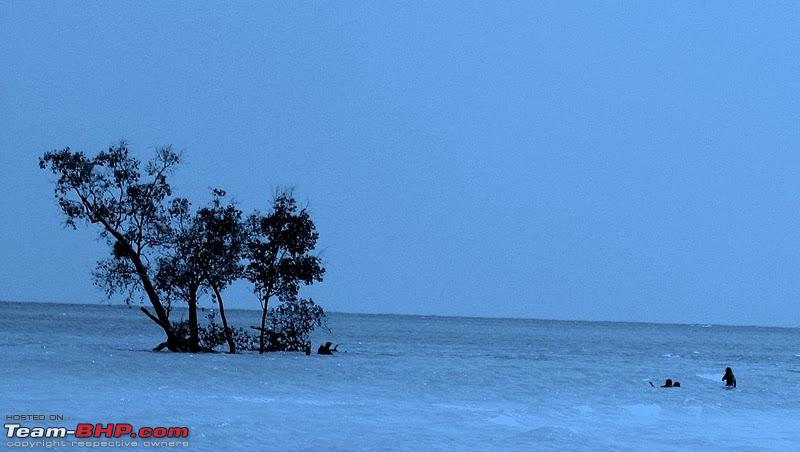 Name:  Beach outside Wild Orchid.JPG