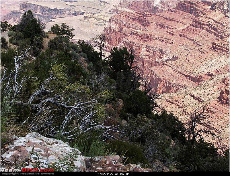 2400 Mile Adventure in Arizona (involving Grand Canyon) in 4 days-picture36.jpg