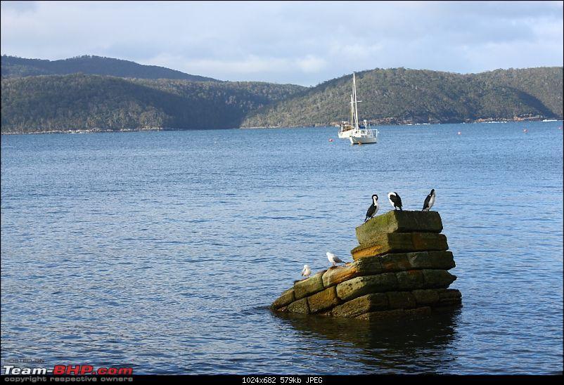 We finally paid the Tasmanian Devil a visit-img_8104.jpg