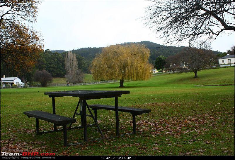 We finally paid the Tasmanian Devil a visit-img_8165.jpg
