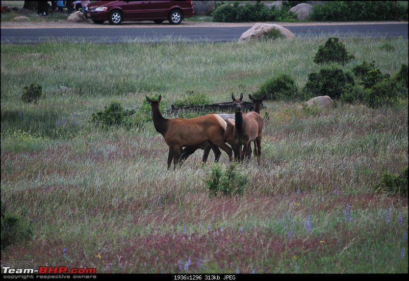 My Colorado Travelogue-dsc_0076_1936x1296.jpg