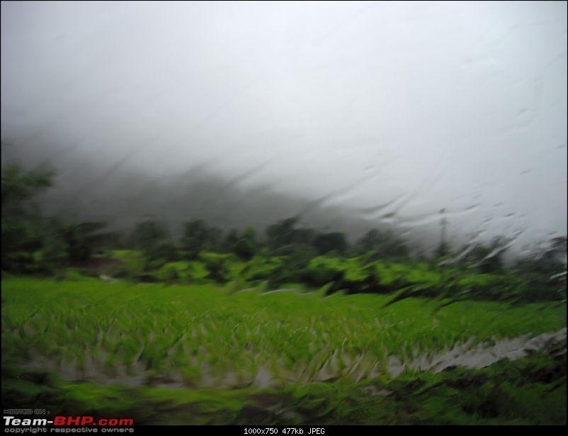 Magnificent Maharashtra - The Mahalog!-imgp4710.jpg