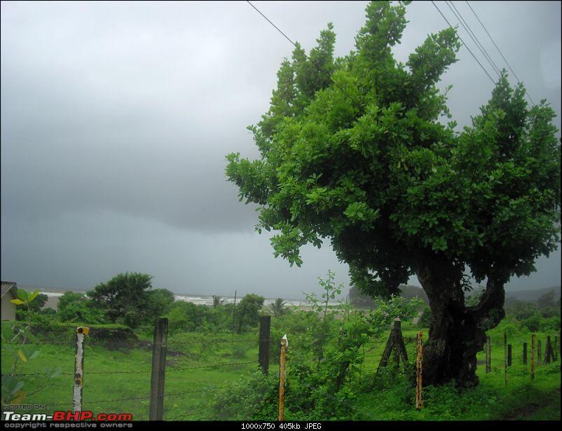 Magnificent Maharashtra - The Mahalog!-imgp4913.jpg