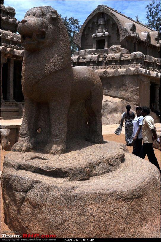 Civic & City : Celebrating the Friendship Day Mahabalipuram - Tranquebar - Velankanni-lion-seems-symbol-pallava-dynasty.jpg