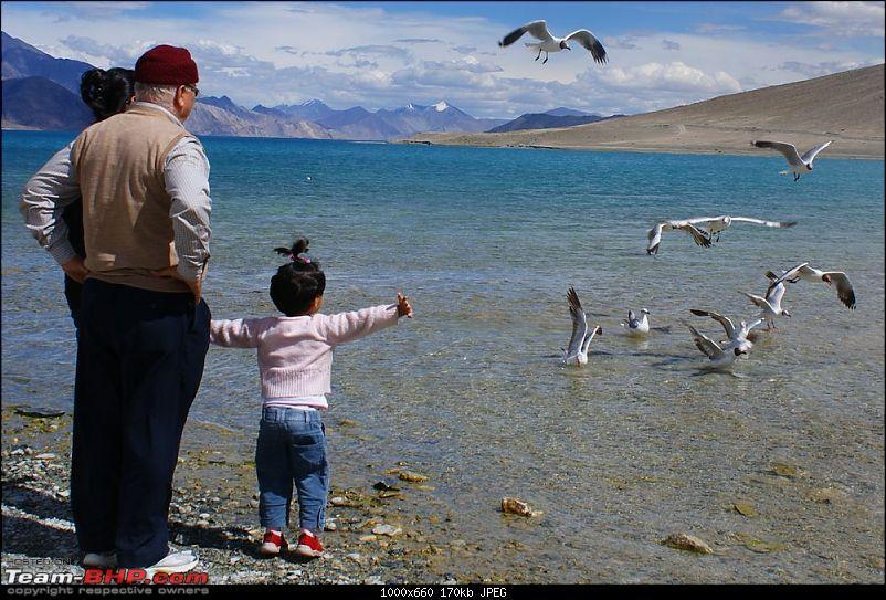 Ladakh- A family Holiday Pictorial!!-dsc05027.jpg