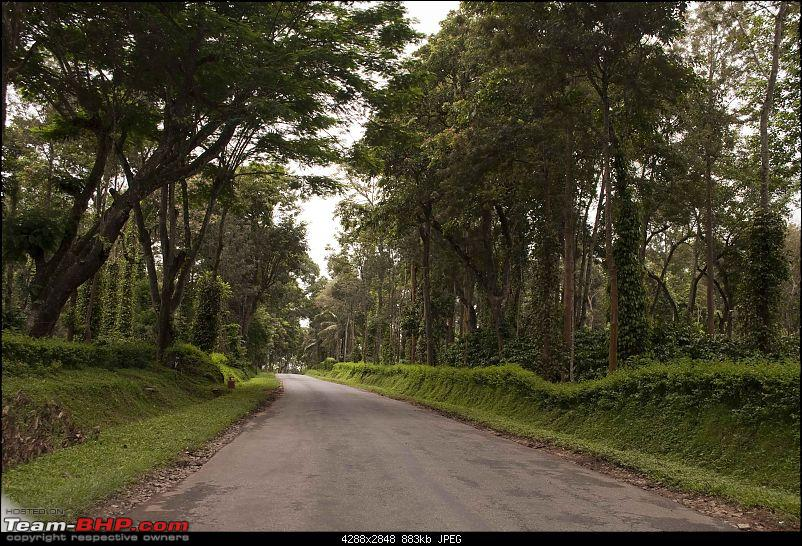Our Coorg Sojourn-dr2.jpg
