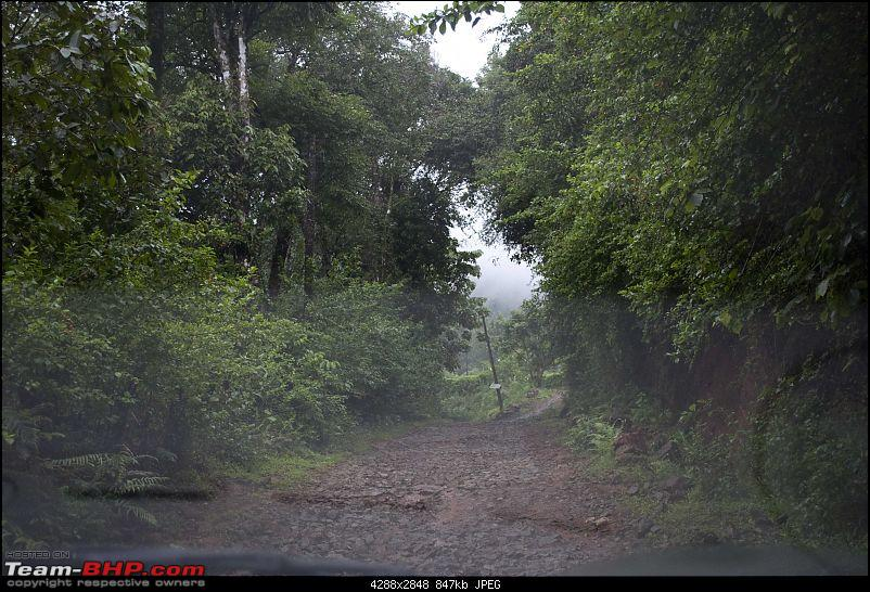 Our Coorg Sojourn-way3.jpg