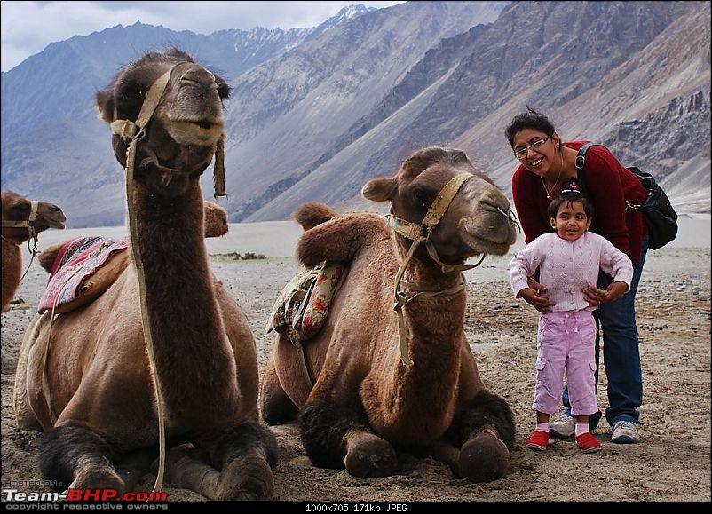 Ladakh- A family Holiday Pictorial!!-dsc05527.jpg
