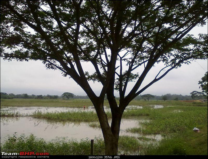 Guwahati getaways: Chandubi Lake-18072010174.jpg