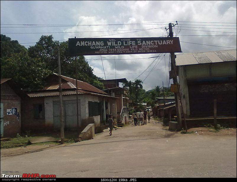 Guwahati getaways: Pobitora-san337.jpg