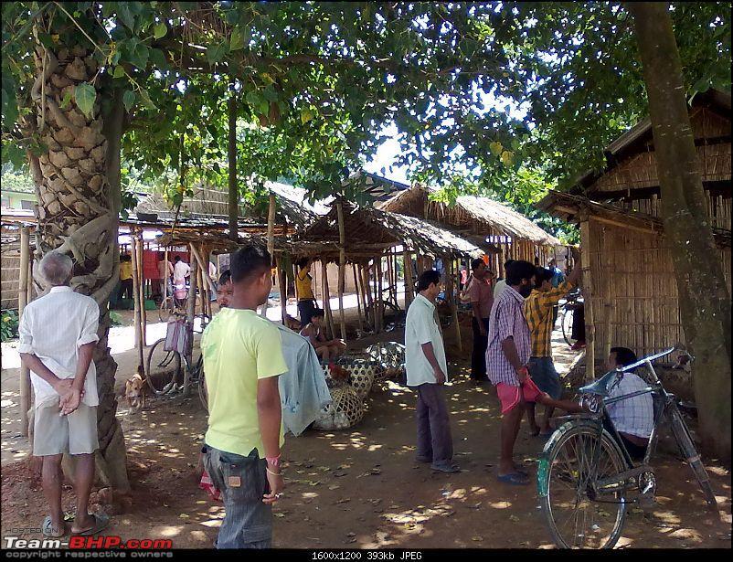Guwahati getaways: Pobitora-san396.jpg