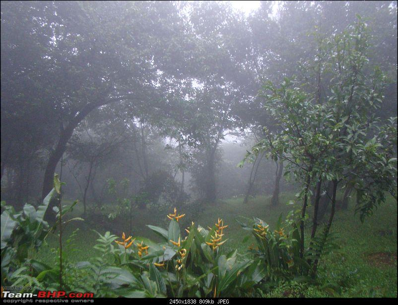Monsoon Break : Hills, waterfalls and temples!-2wwabackview.jpg
