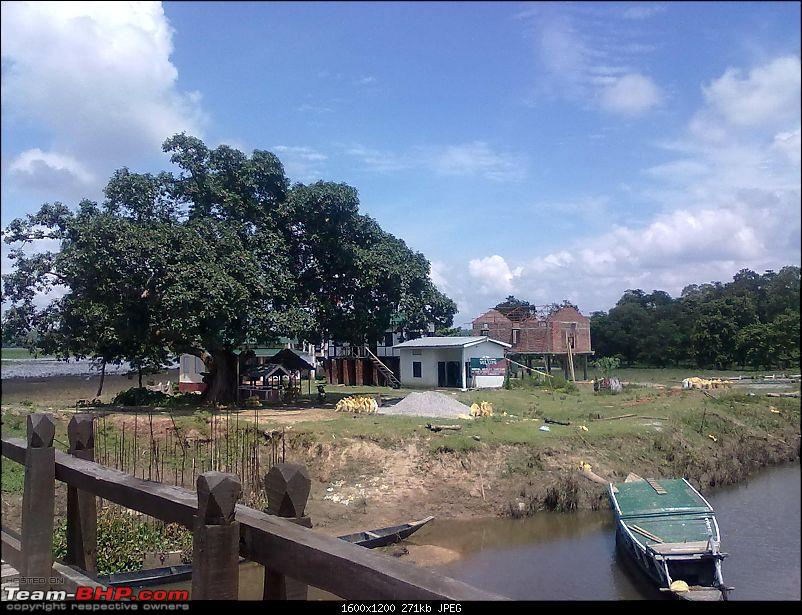 Guwahati getaways: Pobitora-san480.jpg