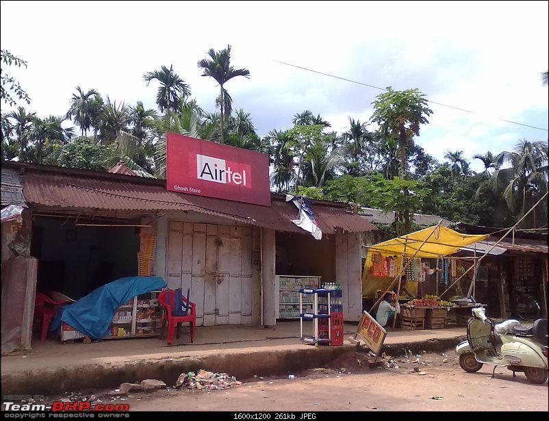 Guwahati getaways: Pobitora-san560.jpg