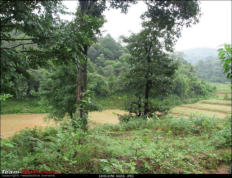 Chennai - Madikeri - Mysore - Chennai Santroed-img_2942.jpg