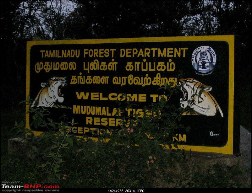 My most Awaited trip Bangalore - ooty - Mukurthi Fishing Hut - ooty - Bangalore.-img_0332.jpg