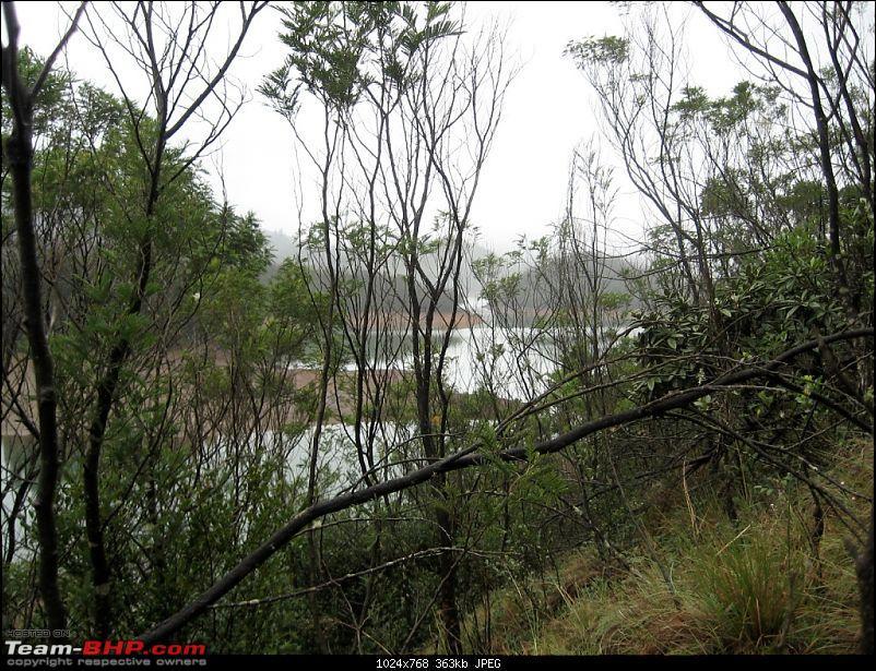 My most Awaited trip Bangalore - ooty - Mukurthi Fishing Hut - ooty - Bangalore.-img_0485.jpg