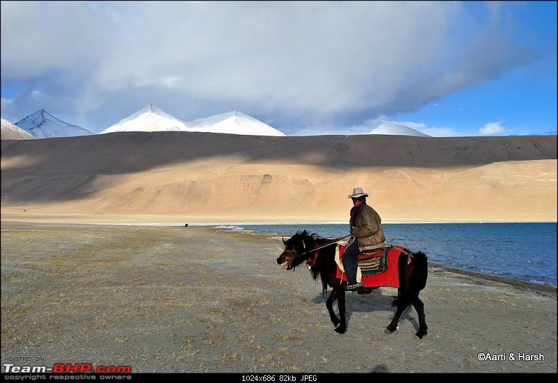 4500 km, Two Idiots & a Wild Safari in Ladakh-240_at-tso-kiagar.jpg