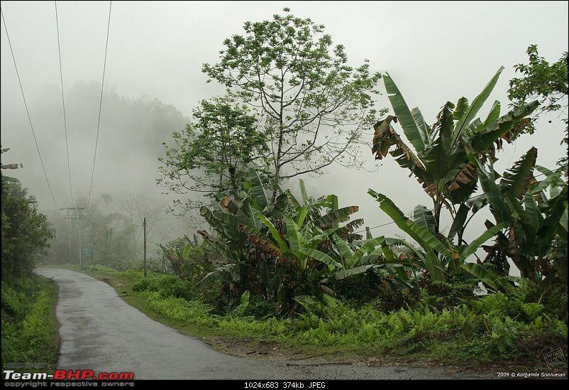 Guwahati to Burma: Stillwell Road - Pangsau Pass-3492452149_0c3840f053_b.jpg