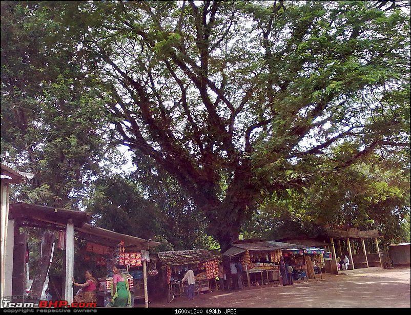 Guwahati getaways: Madan Kamdev, Doul Govinda, Aswaklanta etc-san834.jpg