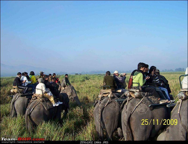 Guwahati getaways: A vanishing Kaziranga-8.jpg