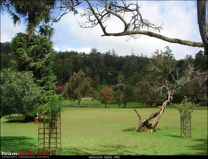 Queen of the hills : Bangalore to Ooty.-picture-186.jpg