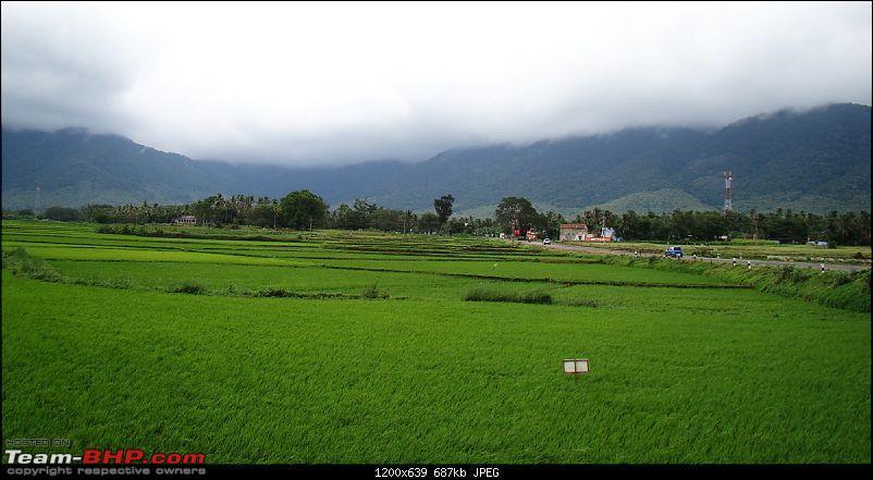 Rustic Tamilnadu - Shenkottai-Thenkasi-Kalladakurichi-Ambasamudram-Kalakkad-dsc06427.jpg