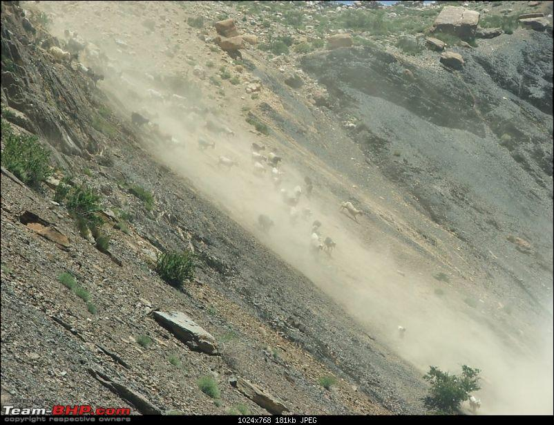 Rohtang Didn't Let me Pass; Spiti & Chandratal It Was!-0039.jpg