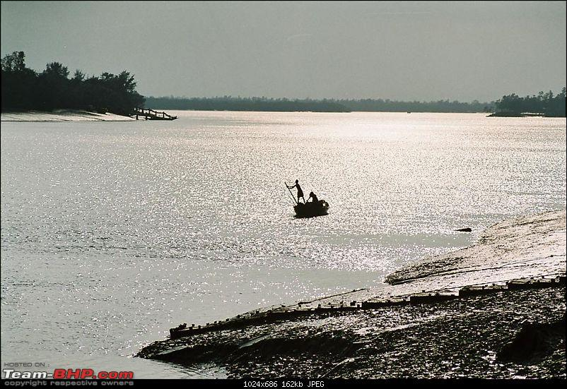 Headed to Sundarbans in search of the elusive Royal Bengal Tiger-life-goes-large.jpg