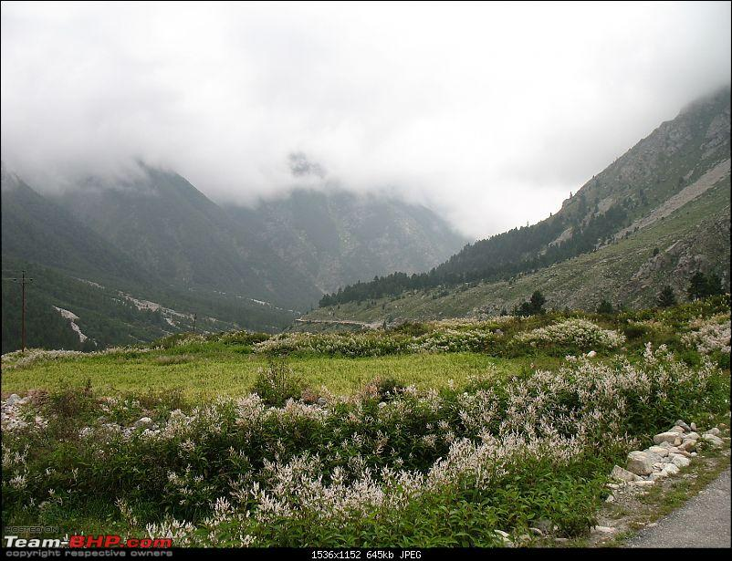Back to Sangla-102.jpg