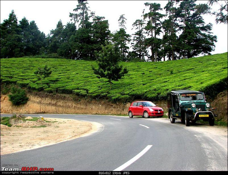 Munnar! The heaven on this earth. A lover's paradise-img_1266.jpg