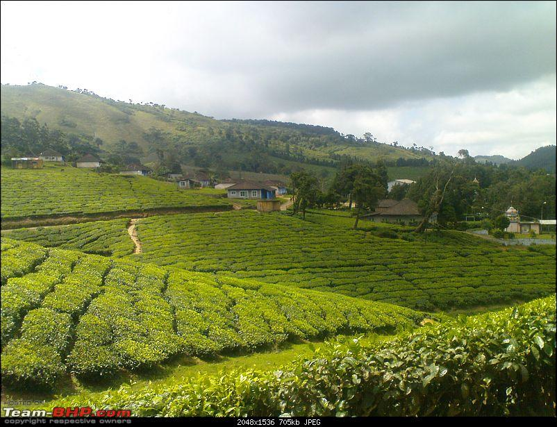 Meghamalai - A Would be Hill Station in TN-dsc00043.jpg