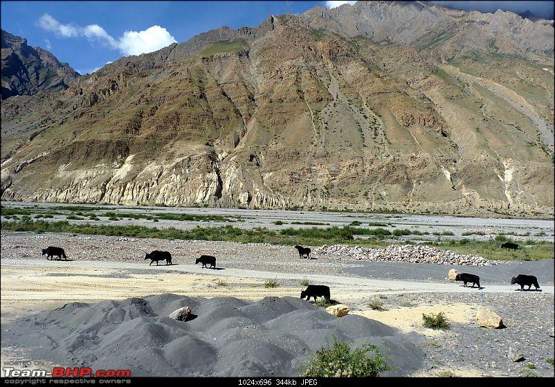 The lake of the moon and the Spiti Sprint!-996812087_xv7cdxl.jpg