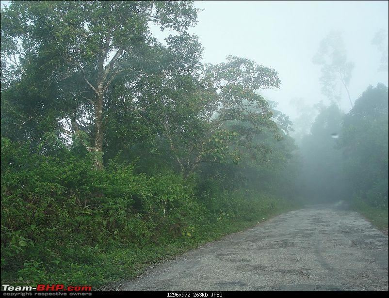 Experiencing the Monsoon - On the Horse Face and on top of KA - A Trekkalog-kudremukh-2.jpg