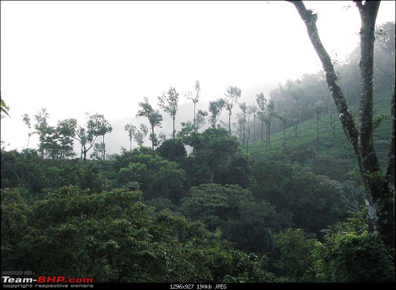 Experiencing the Monsoon - On the Horse Face and on top of KA - A Trekkalog-kudremukh-18.jpg