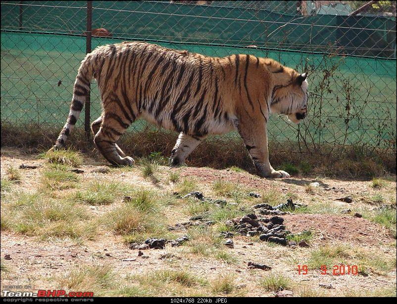 Some pics and Experience at South Africa-l_r-park-125.jpg