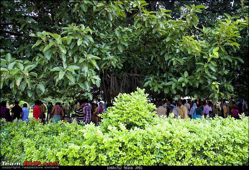@Mahalaya 2010 - Dakhineshwar Kolkata-6.jpg