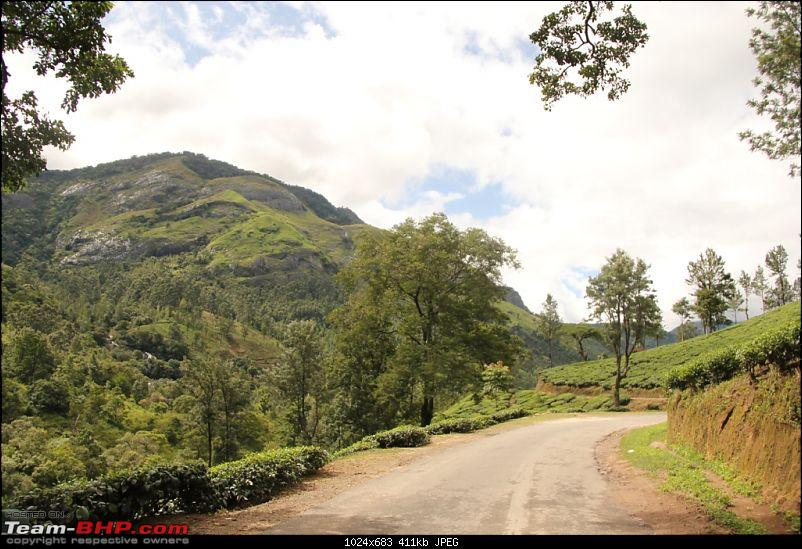 A trip through the lesser known roads of Munnar and Vagamon-img_1296.jpg