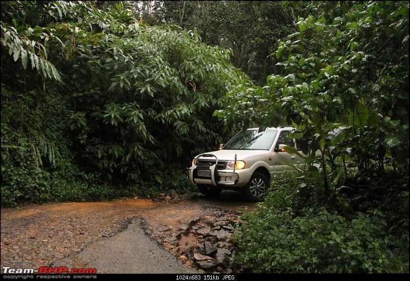 A trip through the lesser known roads of Munnar and Vagamon-img_1509.jpg