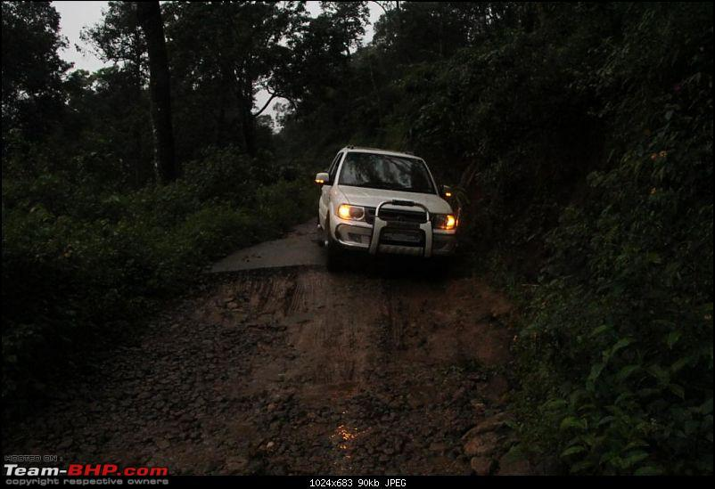 A trip through the lesser known roads of Munnar and Vagamon-img_1522.jpg