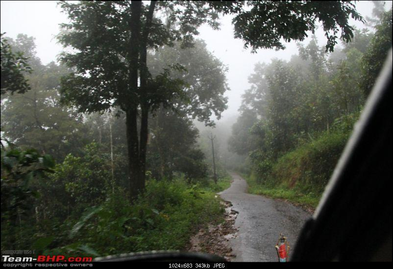 A trip through the lesser known roads of Munnar and Vagamon-img_1526.jpg