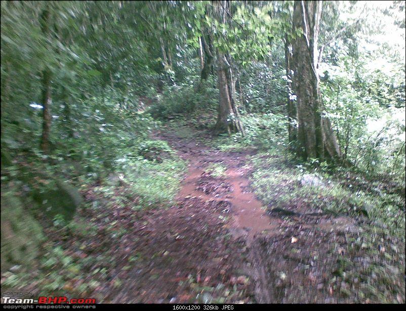 Nilliyampathy- forest ride boon for trekkers-5.jpg