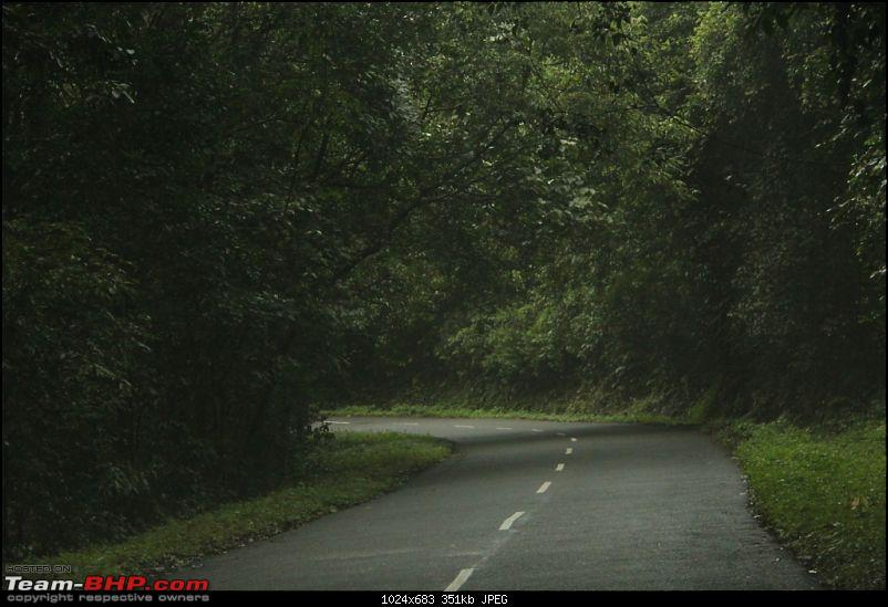 A trip through the lesser known roads of Munnar and Vagamon-img_2013.jpg