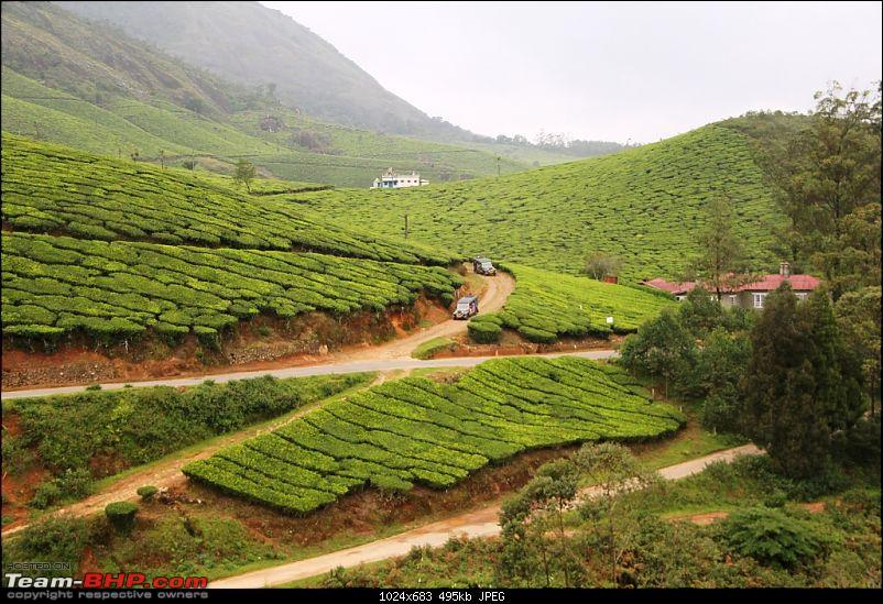 A trip through the lesser known roads of Munnar and Vagamon-img_2393.jpg
