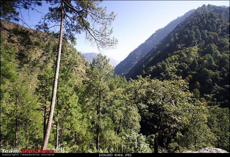 The Great Himalayan National Park : A trek/Photolog-1059074428_22b4dxl.jpg