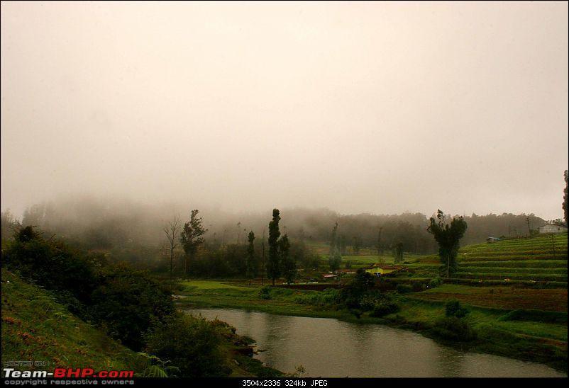 Bandipur, Ooty - Panther, Tiger, Tea estates and Mist-img_2992.jpg