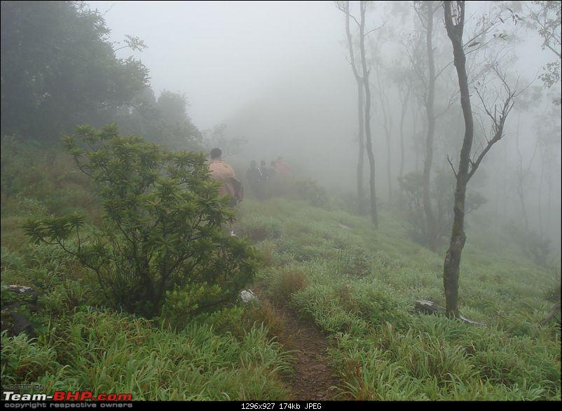 Experiencing the Monsoon - On the Horse Face and on top of KA - A Trekkalog-mbgiri-44.jpg