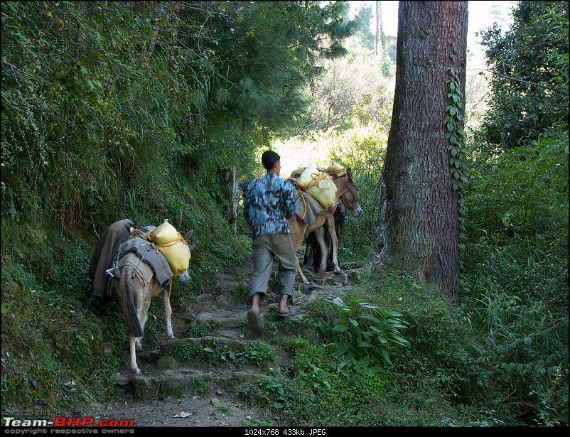 The Great Himalayan National Park : A trek/Photolog-1059742987_hvjtbxl.jpg