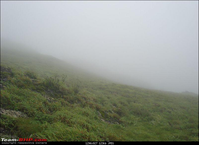 Experiencing the Monsoon - On the Horse Face and on top of KA - A Trekkalog-mbgiri-65.jpg